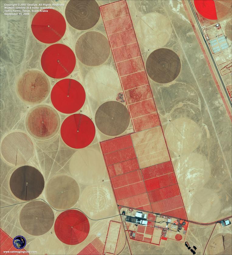 ikonos-tadco-farms-saudi-arabia-web